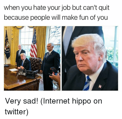 Hippoe: when you hate your job but can't quit  because people will make fun of you Very sad! (Internet hippo on twitter)