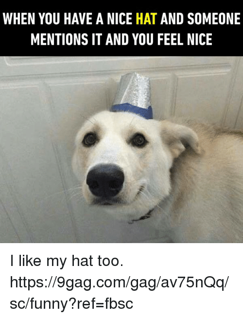 9gag, Dank, and Funny: WHEN YOU HAVE A NICE HAT AND SOMEONE  MENTIONS IT AND YOU FEEL NICE I like my hat too.  https://9gag.com/gag/av75nQq/sc/funny?ref=fbsc