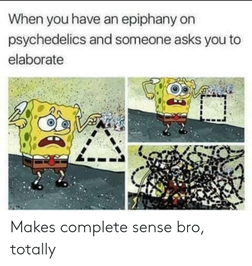Epiphany, Asks, and You: When you have an epiphany on  psychedelics and someone asks you to  elaborate Makes complete sense bro, totally