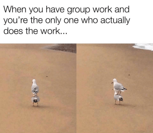 Work, Only One, and Who: When you have group work and  you're the only one who actually  does the work..