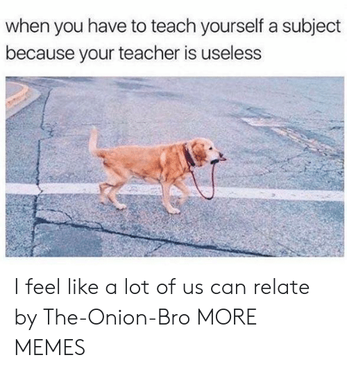 The Onion: when you have to teach yourself a subject  because your teacher is useless I feel like a lot of us can relate by The-Onion-Bro MORE MEMES