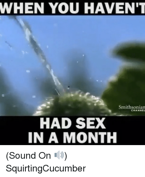 Memes, Sex, and Smithsonian: WHEN YOU HAVEN'T  Smithsonian  CHANNE  HAD SEX  IN A MONTH (Sound On 🔊) SquirtingCucumber