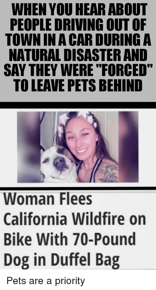 "Driving, California, and Pets: WHEN YOU HEAR ABOUT  PEOPLE DRIVING OUT OF  TOWN IN A CAR DURING A  NATURAL DISASTER AND  SAY THEY WERE ""FORCED""  TO LEAVE PETS BEHIND  Woman Flees  California Wildfire on  Bike With 70-Pound  Dog in Duffel Bag <p>Pets are a priority</p>"