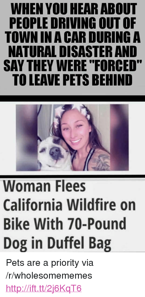 "Driving, California, and Pets: WHEN YOU HEAR ABOUT  PEOPLE DRIVING OUT OF  TOWN IN A CAR DURING A  NATURAL DISASTER AND  SAY THEY WERE ""FORCED""  TO LEAVE PETS BEHIND  Woman Flees  California Wildfire on  Bike With 70-Pound  Dog in Duffel Bag <p>Pets are a priority via /r/wholesomememes <a href=""http://ift.tt/2j6KqT6"">http://ift.tt/2j6KqT6</a></p>"