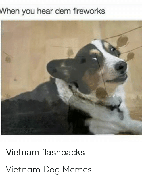 When You Hear Dem Fireworks Vietnam Flashbacks Vietnam Dog Memes