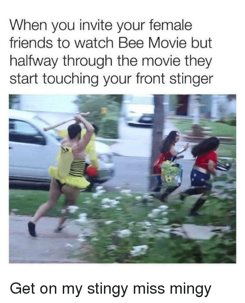 Bee Movie, Friends, and Stingy: When you invite your female  friends to watch Bee Movie but  halfway through the movie they  start touching your front stinger Get on my stingy miss mingy