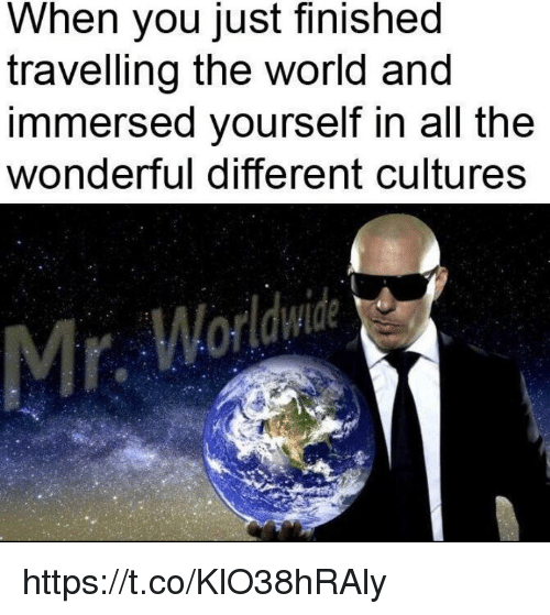 Memes, World, and All The: When you just finished  travelling the world and  immersed yourself in all the  wonderful different cultures  Mr https://t.co/KlO38hRAly