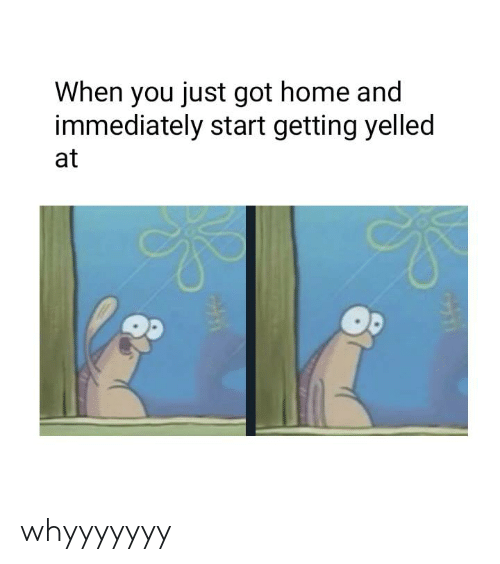 Dank, Home, and 🤖: When you just got home and  immediately start getting yelled  at whyyyyyyy