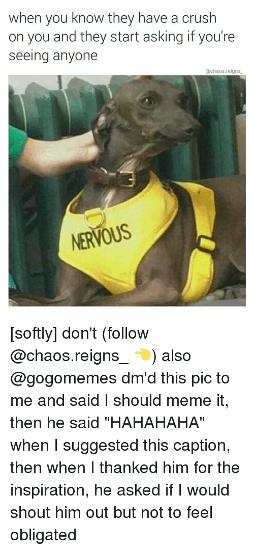 """obliged: when you know they have a crush  on you and they start asking if you're  seeing anyone  @chaos reigns  NERVOUS [softly] don't (follow @chaos.reigns_ 👈) also @gogomemes dm'd this pic to me and said I should meme it, then he said """"HAHAHAHA"""" when I suggested this caption, then when I thanked him for the inspiration, he asked if I would shout him out but not to feel obligated"""
