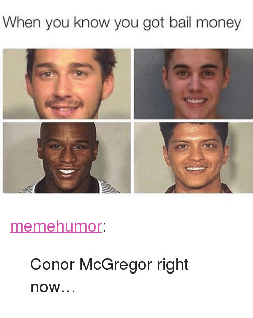 """Conor McGregor, Money, and Tumblr: When you know you got bail money <p><a href=""""http://memehumor.net/post/172715028459/conor-mcgregor-right-now"""" class=""""tumblr_blog"""">memehumor</a>:</p>  <blockquote><p>Conor McGregor right now…</p></blockquote>"""