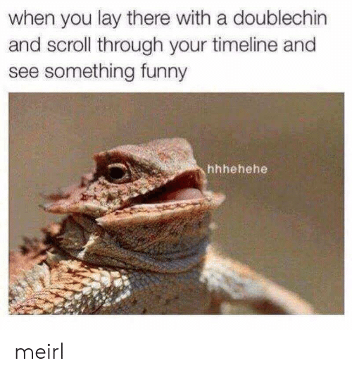Funny, MeIRL, and You: when you lay there with a doublechin  and scroll through your timeline and  see something funny  hhhehehe meirl