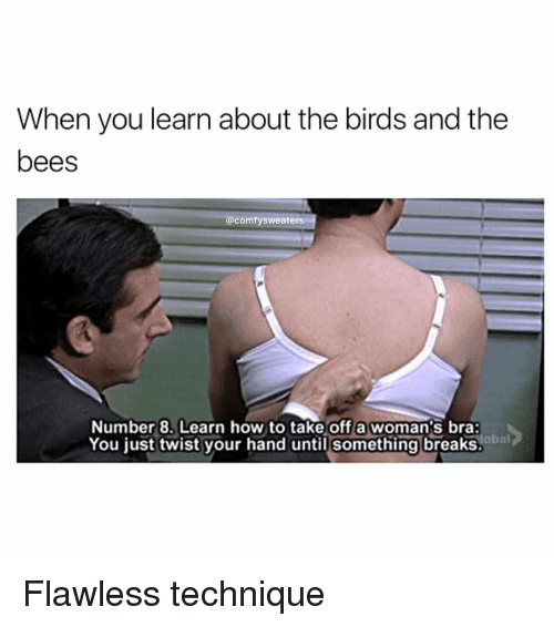 Memes, The Birds, and Bees: When you learn about the birds and the  bees  @comfy sweaters  Number 8. Learn how to take off a woman's bra:  lobal  You just twist your hand until something breaks Flawless technique
