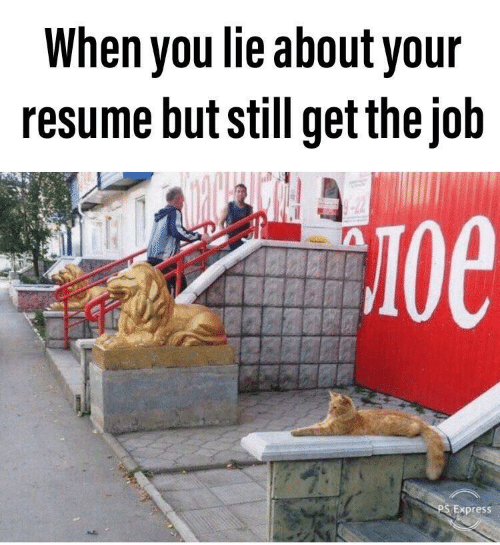 Express, Resume, and Job: When you lie about your  resume but still get the job  -22  Oe  PS Express