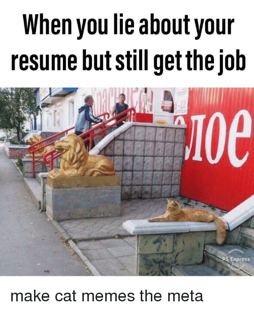 Anaconda, Memes, and Express: When you lie about your  resume but still get thejob  100  Express make cat memes the meta