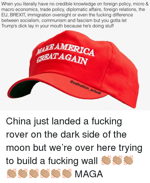 Dark Side of the Moon, Fucking, and Memes: When you literally have no credible knowledge on foreign policy, micro &  macro economics, trade policy, diplomatic affairs, foreign relations, the  EU, BREXIT, immigration oversight or even the fucking difference  between socialism, communism and fascism but you gotta let  Trump's dick lay in your mouth because he's doing stuff  GREAT AGAIN  @oafnation actual China just landed a fucking rover on the dark side of the moon but we're over here trying to build a fucking wall 👏🏽👏🏽👏🏽👏🏽👏🏽👏🏽👏🏽👏🏽👏🏽 MAGA