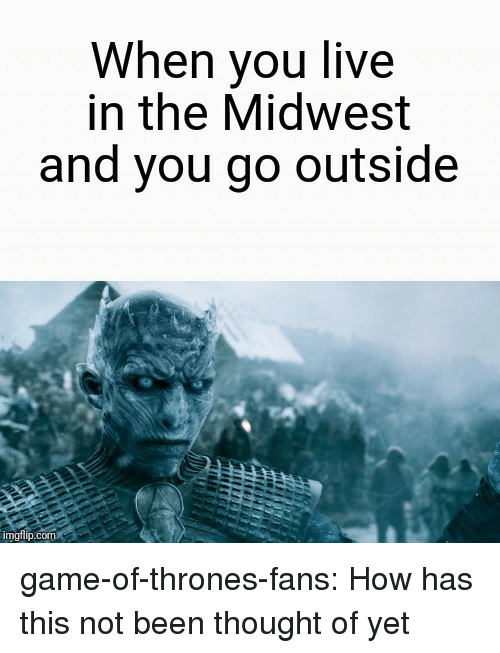Game of Thrones, Tumblr, and Blog: When you live  in the Midwest  and you go outside  imgflp.com game-of-thrones-fans:  How has this not been thought of yet