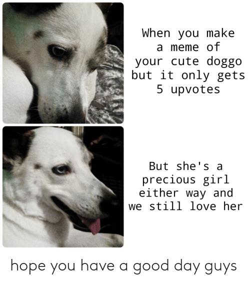 Make A Meme: When you make  a meme of  your cute doggo  but it only gets  5 upvotes  But she's a  precious girl  either way and  we still love her hope you have a good day guys