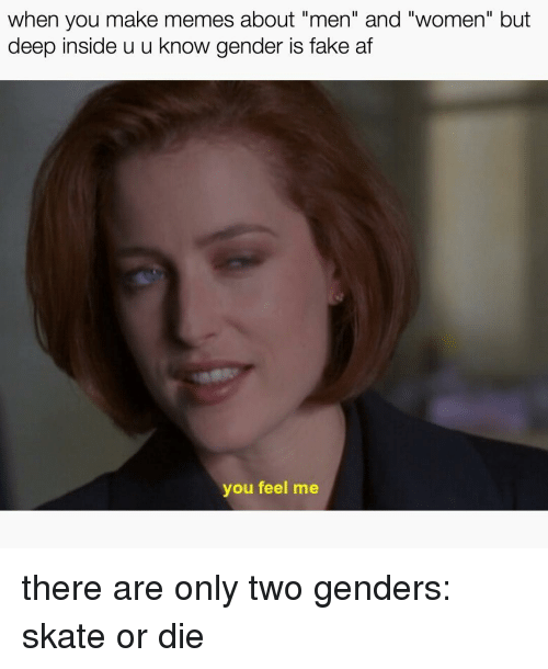 """Making Meme: when you make memes about """"men"""" and """"women"""" but  deep inside u u know gender is fake at  you feel me there are only two genders: skate or die"""