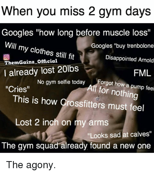 "Clothes, Disappointed, and Fml: When you miss 2 gym days  Googles ""how long before muscle loss""  Googles ""buy trenbolone  Disappointed Arnold  FML  Will my clothes still fit  回  ThemGainz Official  I already lost 20lbs  No gym selfie todayForgot how a p  Alf for nothing  ""Cries""  This is how Crossfitters must feel  Lost 2 inch on my arms  Looks sad at calves""  The gym squad already found a new one The agony."