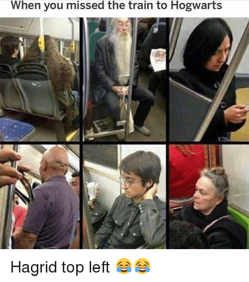 Funny, Train, and Hogwarts: When you missed the train to Hogwarts Hagrid top left 😂😂