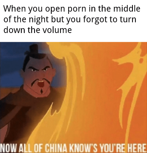 China, Porn, and The Middle: When you open porn in the middle  of the night but you forgot to turn  down the volume  NOW ALL OF CHINA KNOW'S YOU'RE HERE