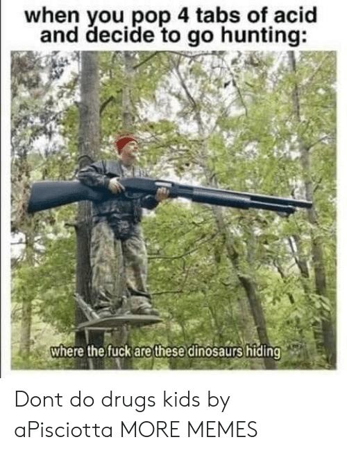 Dank, Drugs, and Memes: when you pop 4 tabs of acid  and decide to go hunting:  where the fuck are these dinosaurs hiding Dont do drugs kids by aPisciotta MORE MEMES