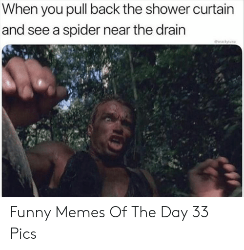 Funny, Memes, and Shower: When you pull back the shower curtain  and see a spider near the drain  eunackytura Funny Memes Of The Day 33 Pics