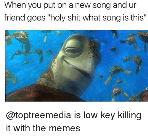 "Funny, Low Key, and Lowes: When you put on a new song and ur  friend goes ""holy shit what song is this""  OTopTree Media @toptreemedia is low key killing it with the memes"