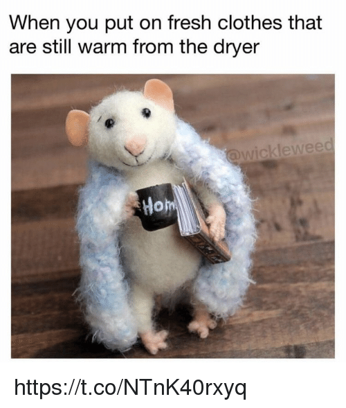 Dryer: When you put on fresh clothes that  are still warm from the dryer  ckleweed  Hom https://t.co/NTnK40rxyq