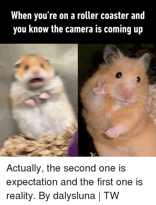 Dank, Camera, and Reality: When you re on a roller coaster and  you know the camera is coming up Actually, the second one is expectation and the first one is reality.  By dalysluna | TW