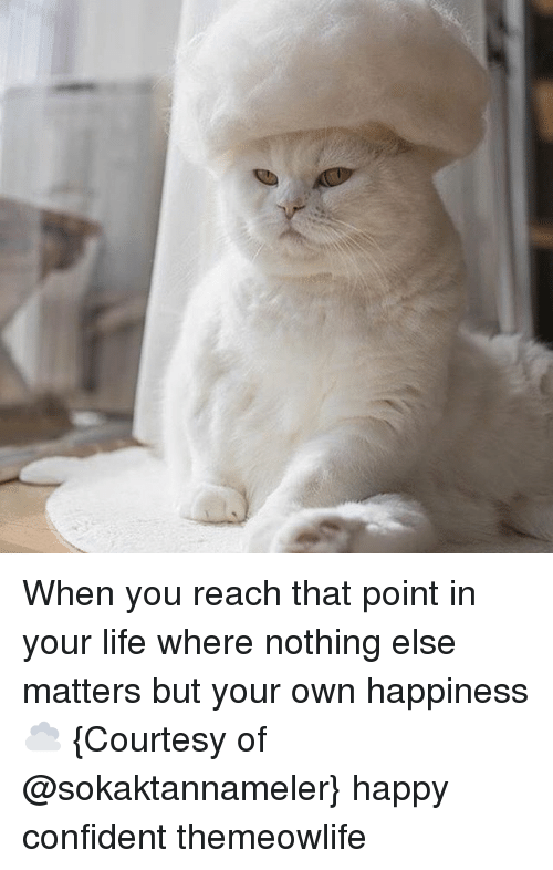 Life, Memes, and Happy: When you reach that point in your life where nothing else matters but your own happiness ☁️ {Courtesy of @sokaktannameler} happy confident themeowlife