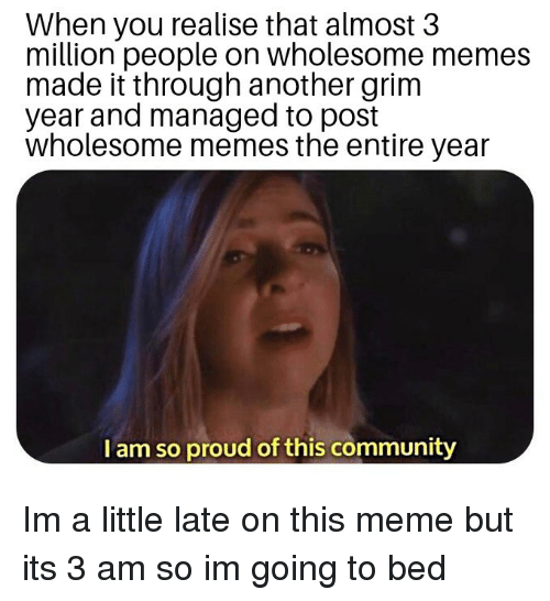 Community, Meme, and Memes: When you realise that almost 3  million people on wholesome memes  made it through another grim  year and managed to post  wholesome memes the entire year  I am so proud of this community Im a little late on this meme but its 3 am so im going to bed