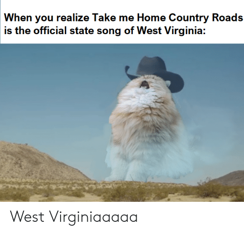 west virginia: When you realize Take me Home Country Roads  is the official state song of West Virginia: West Virginiaaaaa