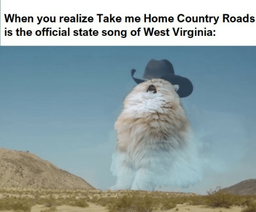 west virginia: When you realize Take me Home Country Roads  is the official state song of West Virginia: