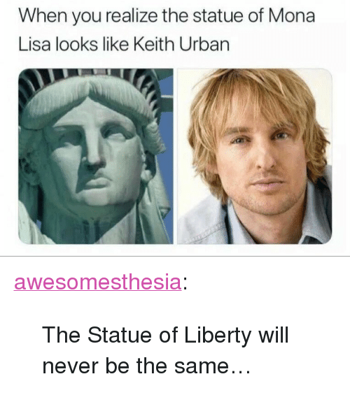 """Tumblr, Mona Lisa, and Blog: When you realize the statue of Mona  Lisa looks like Keith Urban <p><a href=""""http://awesomesthesia.tumblr.com/post/173290027132/the-statue-of-liberty-will-never-be-the-same"""" class=""""tumblr_blog"""">awesomesthesia</a>:</p>  <blockquote><p>The Statue of Liberty will never be the same…</p></blockquote>"""