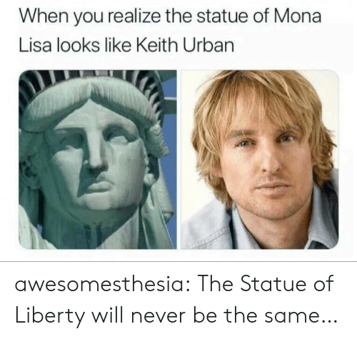 Mona Lisa: When you realize the statue of Mona  Lisa looks like Keith Urban awesomesthesia:  The Statue of Liberty will never be the same…