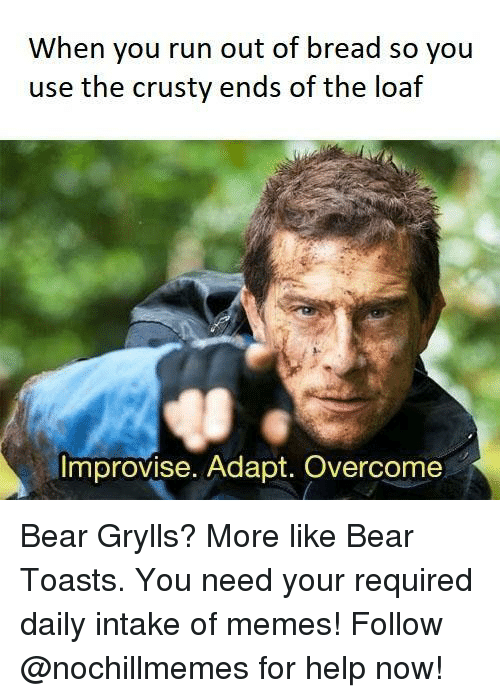 Memes, Run, and Bear: When you run out of bread so you  use the crusty ends of the loaf  Improvise. Adapt. Overcome Bear Grylls? More like Bear Toasts.  You need your required daily intake of memes! Follow @nochillmemes for help now!