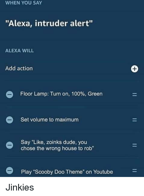 "Anaconda, Dude, and Scooby Doo: WHEN YOU SAY  ""Alexa, intruder alert""  ALEXA WILL  Add action  Floor Lamp: Turn on, 100% Green  Set volume to maximum  Say ""Like, zoinks dude, you  chose the wrong house to rob""  Play ""Scooby Doo Theme"" on Youtube Jinkies"