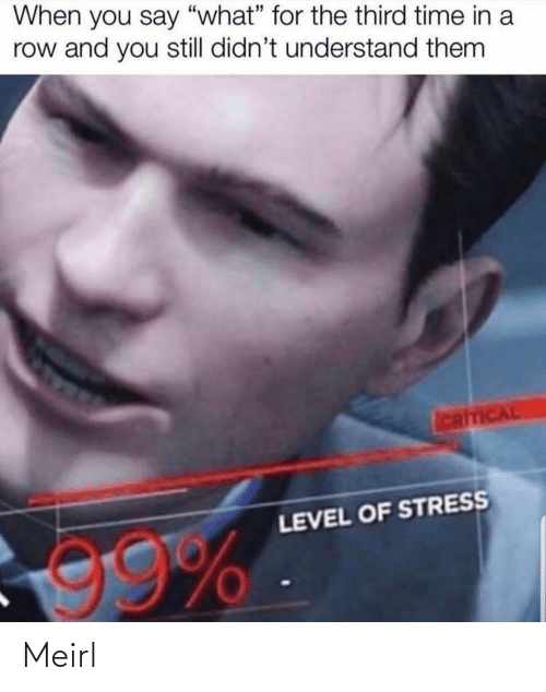 """You Say: When you say """"what"""" for the third time in a  row and you still didn't understand them  ICRITICAL  LEVEL OF STRESS  99% Meirl"""