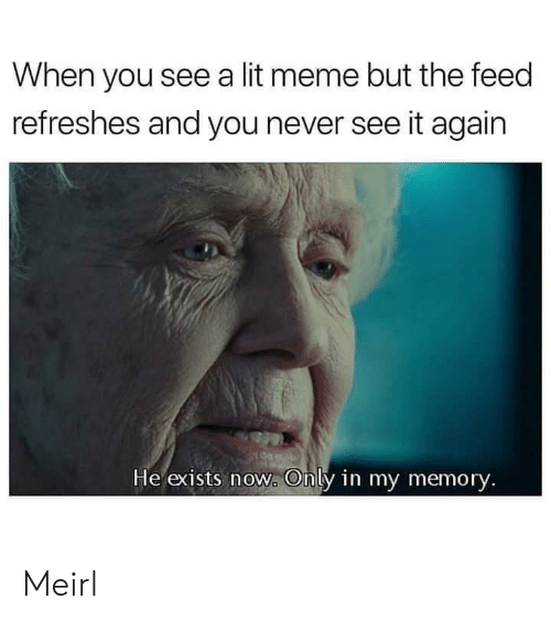 Lit, Meme, and Never: When you see a lit meme but the feed  refreshes and you never see it again  He exists now. Only in my memory. Meirl