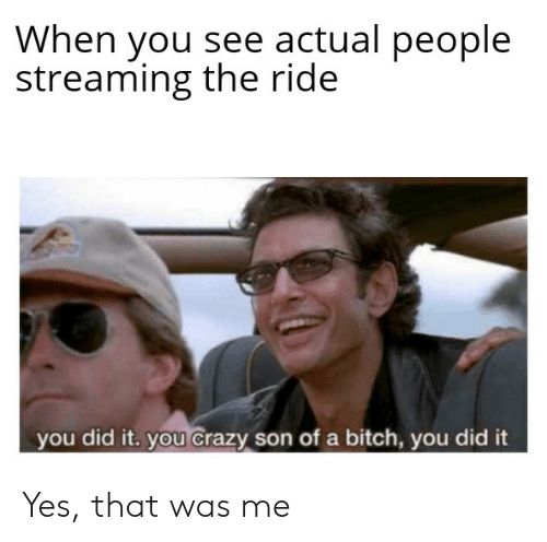 Bitch, Crazy, and Funny: When you see actual people  streaming the ride  you did it. you crazy son of a bitch, you did it Yes, that was me