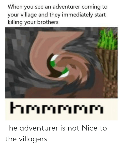 Reddit, Nice, and Brothers: When you see an adventurer coming to  your village and they immediately start  killing your brothers  hmmmmM  MMMMM The adventurer is not Nice to the villagers