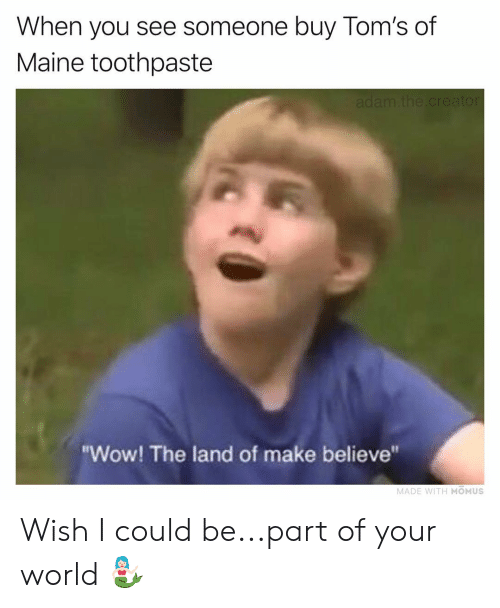"""Memes, Wow, and Maine: When you see someone buy Tom's of  Maine toothpaste  """"Wow! The land of make believe""""  MADE WITH MOMUS Wish I could be...part of your world 🧜🏻♀️"""