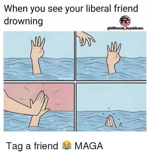 Memes, 🤖, and Liberal: When you see your liberal friend  drowning  @Millennial Republicans  0 Tag a friend 😂 MAGA