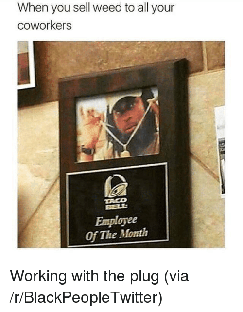 Blackpeopletwitter, Taco Bell, and Weed: When you sell weed to all your  coworkers  TACO  BELL  Employee  Of The Month <p>Working with the plug (via /r/BlackPeopleTwitter)</p>