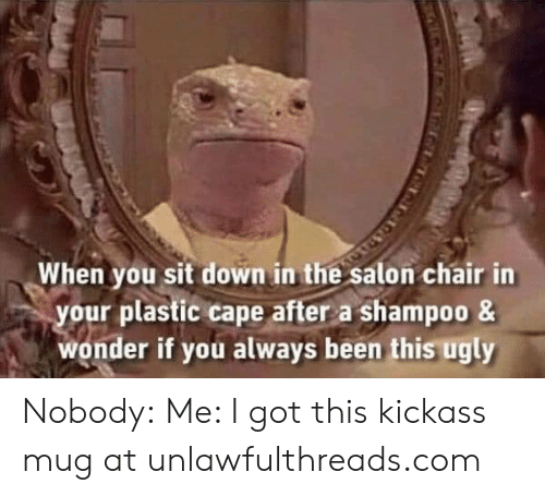 Memes, Ugly, and Salon: When you sit down in the salon chair in  your plastic cape after a shampoo &  wonder if you always been this ugly Nobody: Me: I got this kickass mug at unlawfulthreads.com