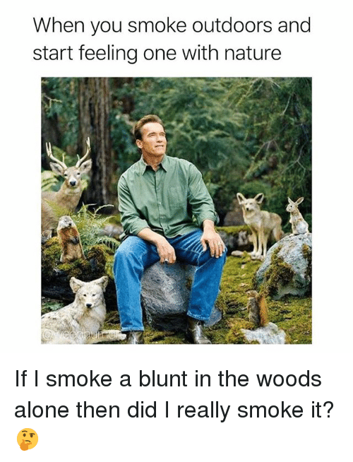 Being Alone, Weed, and Marijuana: When you smoke outdoors and  start feeling one with nature If I smoke a blunt in the woods alone then did I really smoke it? 🤔