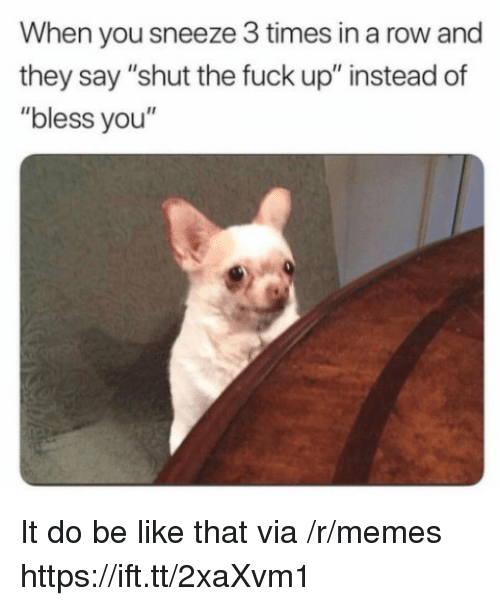 """Be Like, Memes, and Fuck: When you sneeze 3 times in a row and  they say """"shut the fuck up"""" instead of  """"bless you"""" It do be like that via /r/memes https://ift.tt/2xaXvm1"""