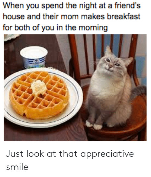 the morning: When you spend the night at a friend's  house and their mom makes breakfast  for both of you in the morning Just look at that appreciative smile