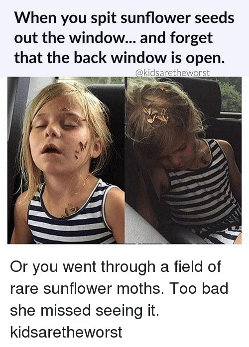 Too Badly: When you spit sunflower seeds  out the window... and forget  that the back window is open.  akidsaretheworst Or you went through a field of rare sunflower moths. Too bad she missed seeing it. kidsaretheworst